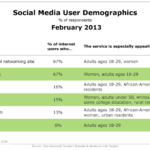 Select Social Media User Demographics, February 2013 [CHART]