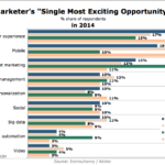 Marketers' Single Most Exciting Opportunity For 2014 [CHART]