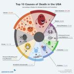 Top Ten Ways Americans Die [INFOGRAPHIC]
