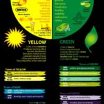 Infographic - The Color Of Marketing