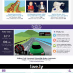 Live Video Streaming [INFOGRAPHIC]