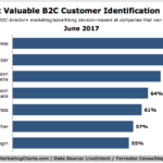Chart: Most Valuable B2C Customer Identification Data