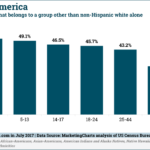 Chart: Non-White American Citizen by Age