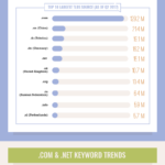 Infographic: Domain Name Facts