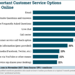 Chart; Most Important Customer Service Options for Online Shopping