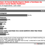 Chart: Social Commerce By Channel